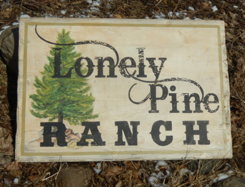 Lonely Pine Ranch