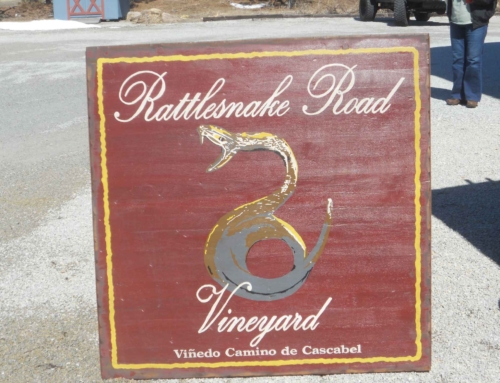 Rattlesnake Road Vineyard
